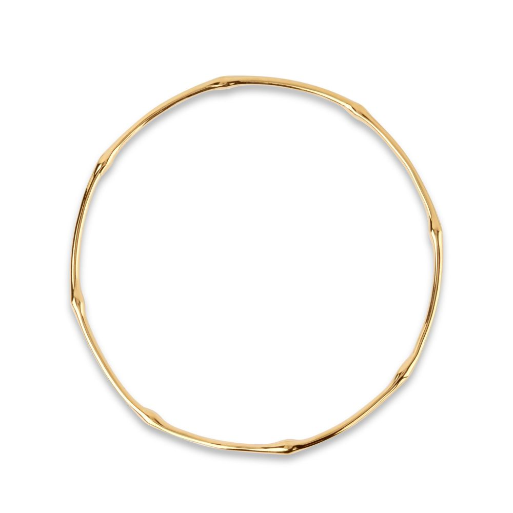 Dinny Hall Bamboo Bangle in Gold Vermeil
