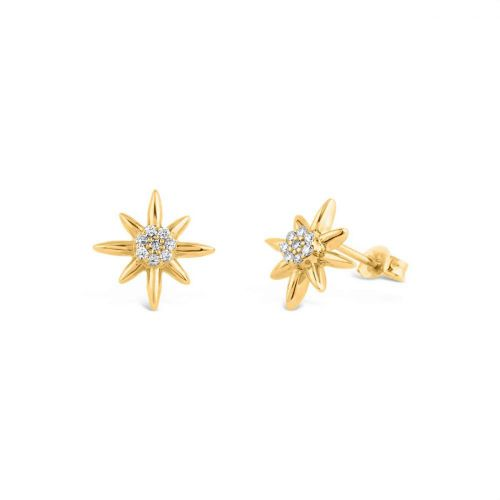 14k Gold Sunbeam Lisbeth Diamond Stud Earrings